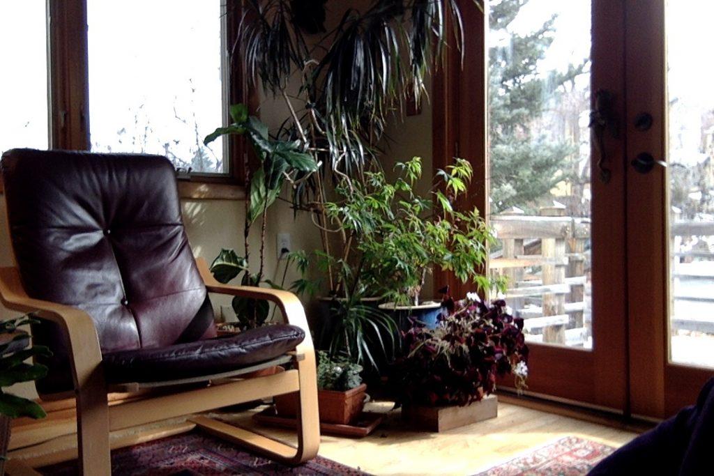 Visit LInda's office in Boulder CO